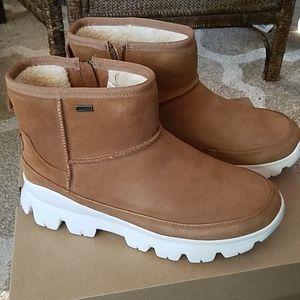 NWT!  Uggs Palomar sneakers